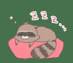 common raccoon sticker #2604908