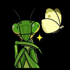 Bug's spirit