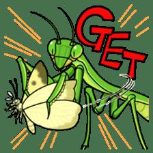 Bug's spirit sticker #2612771