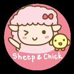 Sheep and Chick (English)