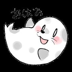Round sea dog