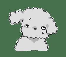 Fluffy Toy Poodle By Nagamo Sticker 2711320