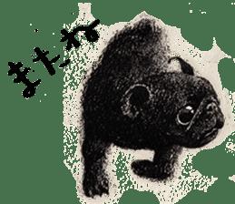 Boku Pug sticker #2715478