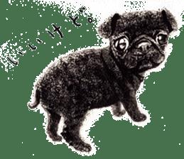Boku Pug sticker #2715479