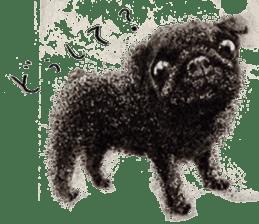 Boku Pug sticker #2715480