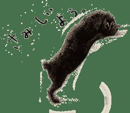 Boku Pug sticker #2715482