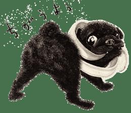 Boku Pug sticker #2715484