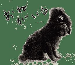 Boku Pug sticker #2715503