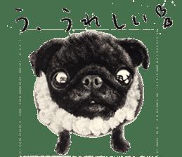 Boku Pug sticker #2715504