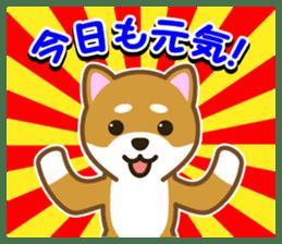 Taro Shiba Inu sticker #2725230