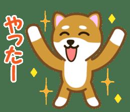 Taro Shiba Inu sticker #2725244