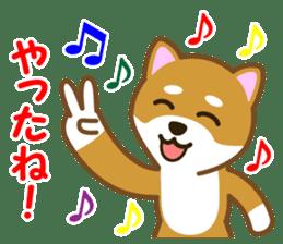 Taro Shiba Inu sticker #2725255