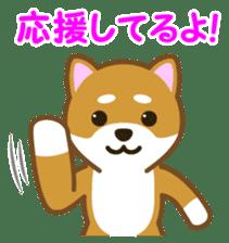 Taro Shiba Inu sticker #2725257