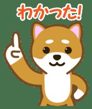 Taro Shiba Inu sticker #2725265