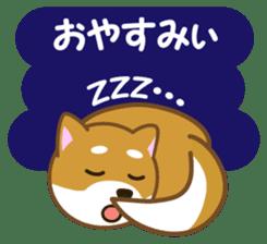 Taro Shiba Inu sticker #2725266