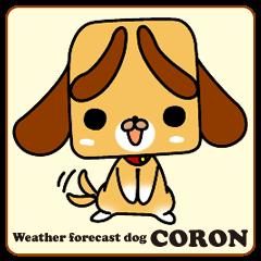 Weather forecast dog CORON