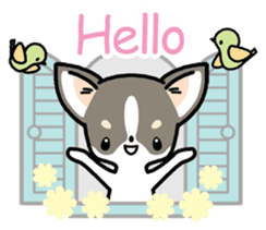 Kawaii Chihuahua (English) sticker #2752339