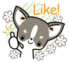 Kawaii Chihuahua (English) sticker #2752348