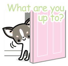 Kawaii Chihuahua (English) sticker #2752363