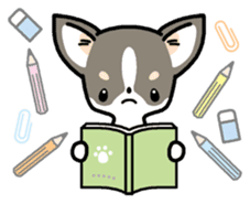 Kawaii Chihuahua (English) sticker #2752365