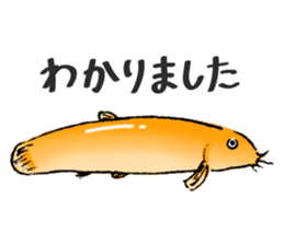 Golden Dojo Loach Sticker sticker #2782846