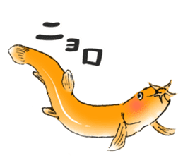 Golden Dojo Loach Sticker sticker #2782851