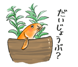 Golden Dojo Loach Sticker sticker #2782854