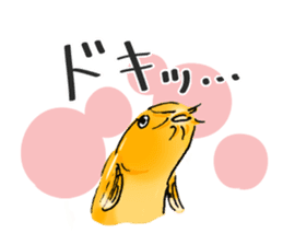 Golden Dojo Loach Sticker sticker #2782855