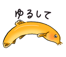 Golden Dojo Loach Sticker sticker #2782877