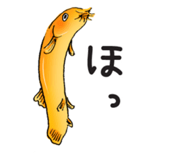 Golden Dojo Loach Sticker sticker #2782882