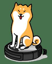 Shiba Inu Genki No.2 (Housework ver.) sticker #2805292