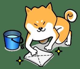 Shiba Inu Genki No.2 (Housework ver.) sticker #2805296