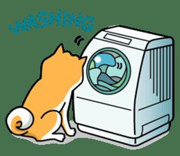 Shiba Inu Genki No.2 (Housework ver.) sticker #2805297