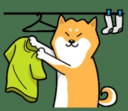 Shiba Inu Genki No.2 (Housework ver.) sticker #2805299