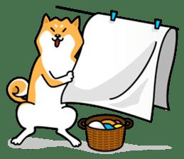 Shiba Inu Genki No.2 (Housework ver.) sticker #2805300