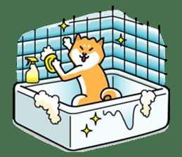 Shiba Inu Genki No.2 (Housework ver.) sticker #2805308