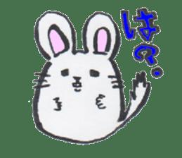 chinchilla sticker #2814781
