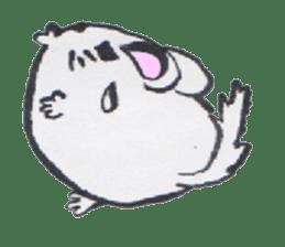 chinchilla sticker #2814799
