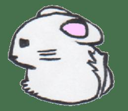 chinchilla sticker #2814804