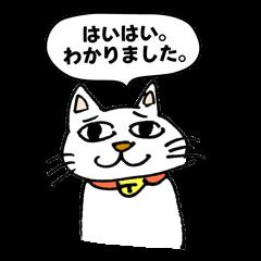 Strange cat stickers.