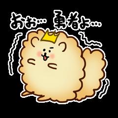 King of the Pomeranian