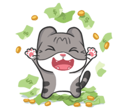 Meow Daily Expressions sticker #2960427