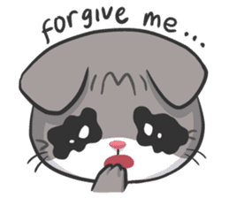 Meow Daily Expressions sticker #2960443
