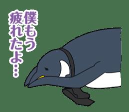 Gentleman Penguin Nietzsche sticker #2982367