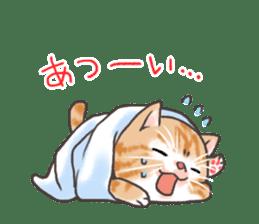 Cat in towel sticker #2996004