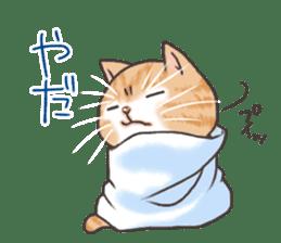Cat in towel sticker #2996007