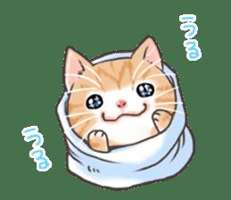 Cat in towel sticker #2996009