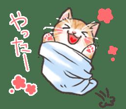 Cat in towel sticker #2996010