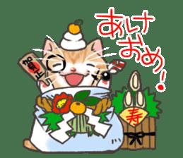 Cat in towel sticker #2996029