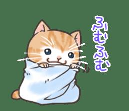 Cat in towel sticker #2996033